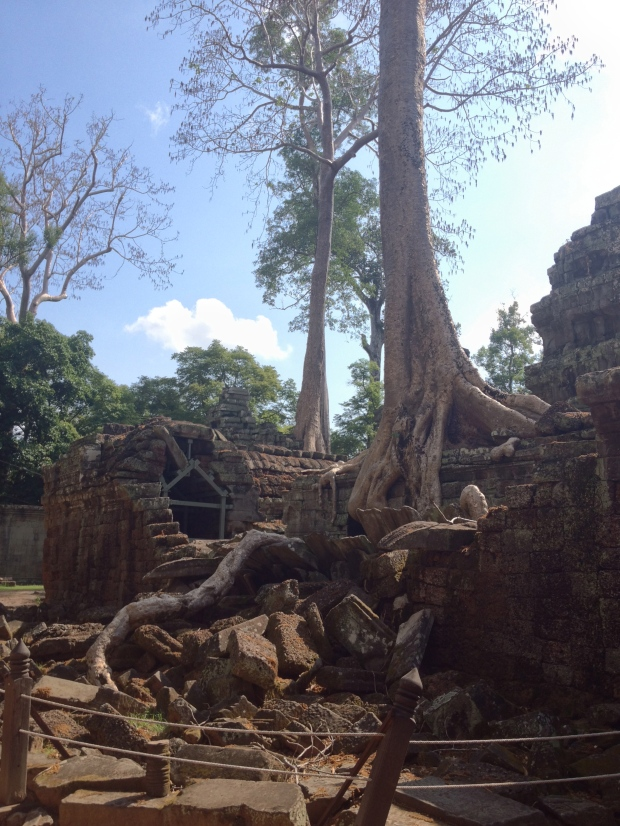 Ta Prohm (Tomb Raider)