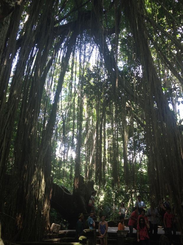 Monkey Forest Sanctuary